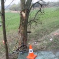 Řidič s autem narazil do stromu Foto: PČR JMK