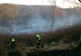 Požár nedaleko Bukovinky Foto: HZS JMK