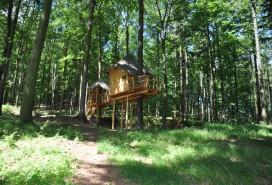 Tree house Foto: MMB